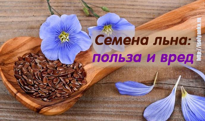 semya-lna   Вот почему осенью и зимой необходимо употреблять семена льна!