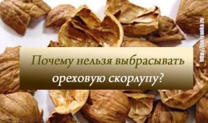 Почему нельзя выбрасывать ореховую скорлупу?
