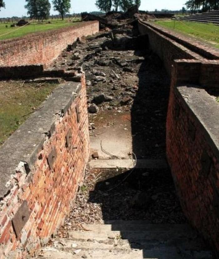 image5-49 | Найденные в Освенциме в 1980 году записи узника расшифровали...