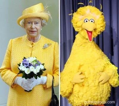 image6-95 | Забавные фото: потрясающее сходство!