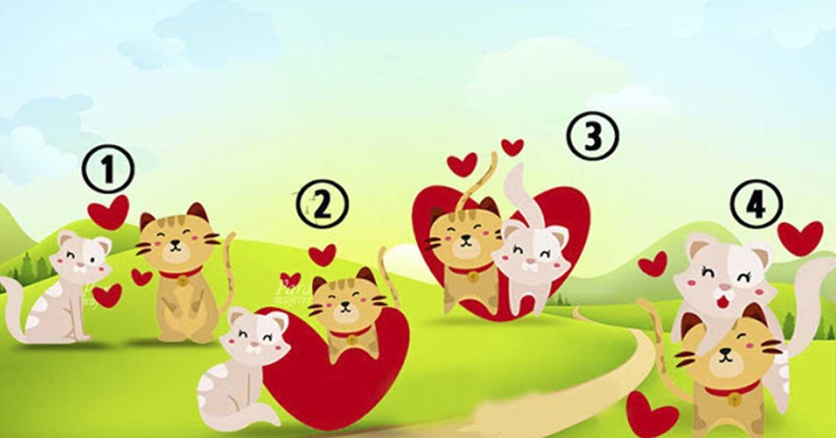 image1-157 | Хотите узнать о себе кое-что интересное? Тогда быстрее выбирайте пару влюбленных кошек!