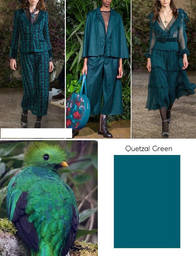 image11-5   Модные цвета осень-зима 2018/2019 по версии экспертов института Pantone