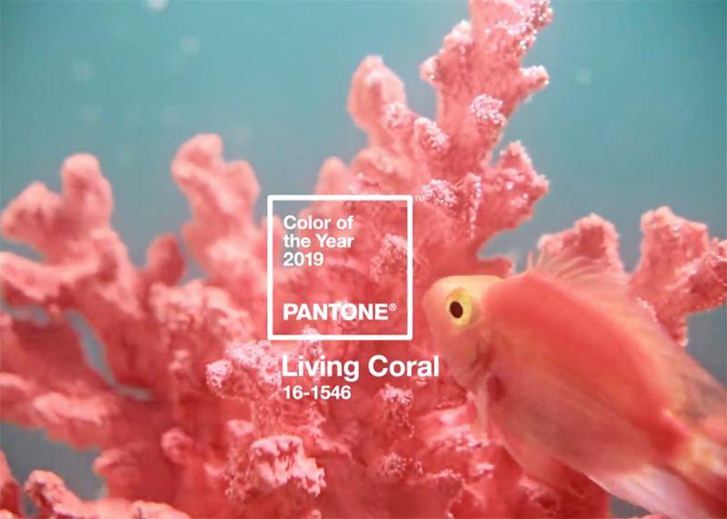 image2 | Главный цвет 2019 года: живой коралловый и 11 вещей этого оттенка которые должны быть в вашем гардеробе