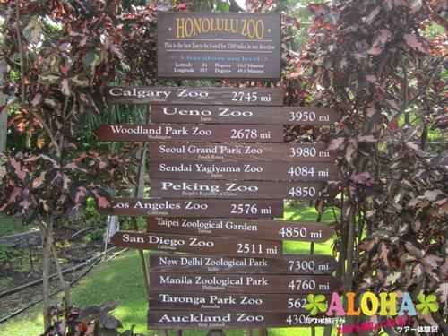 ホノルル動物園内3