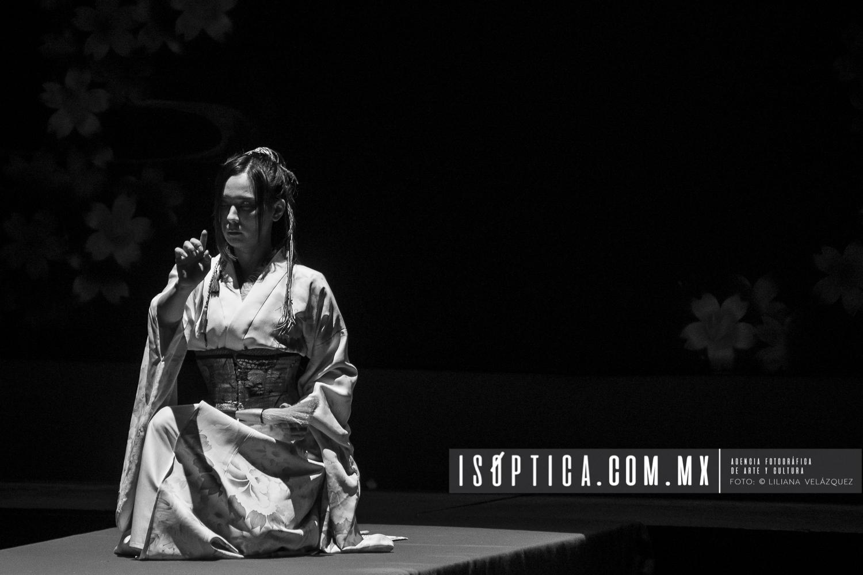 Performance de SHODO