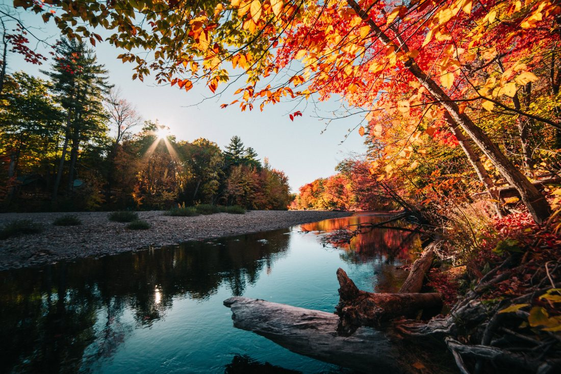 Free Fall Wallpaper Backgrounds Calm River In The Autumn Free Stock Photo Iso Republic