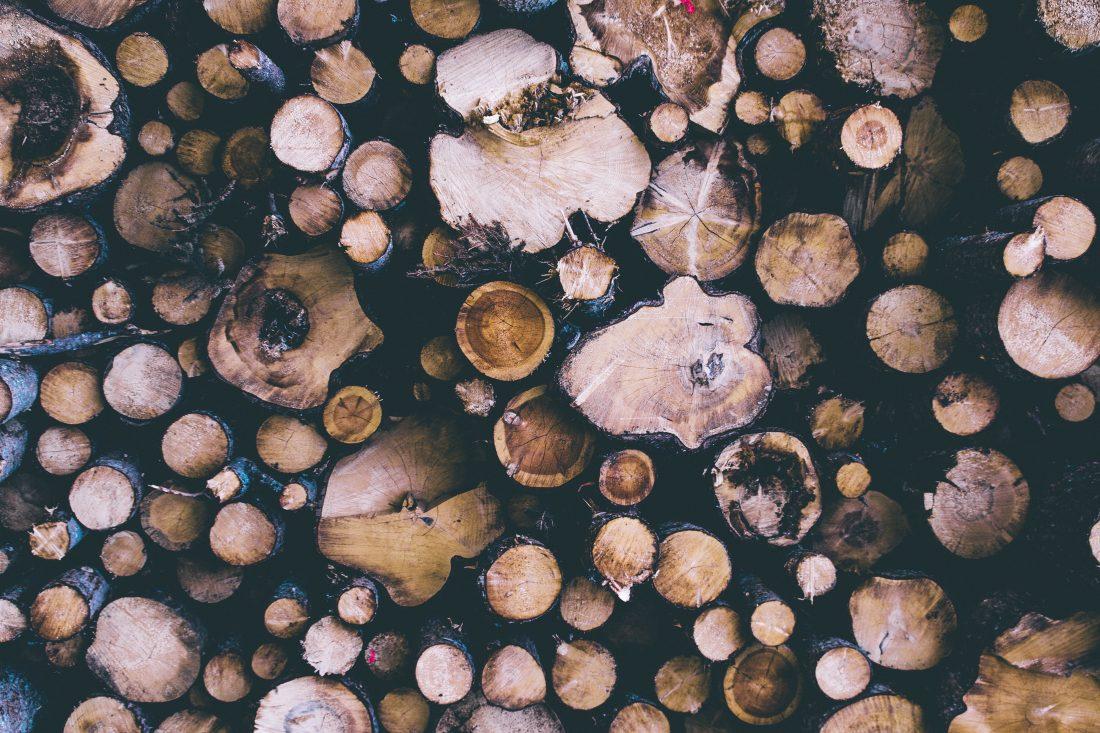 cut tree logs free