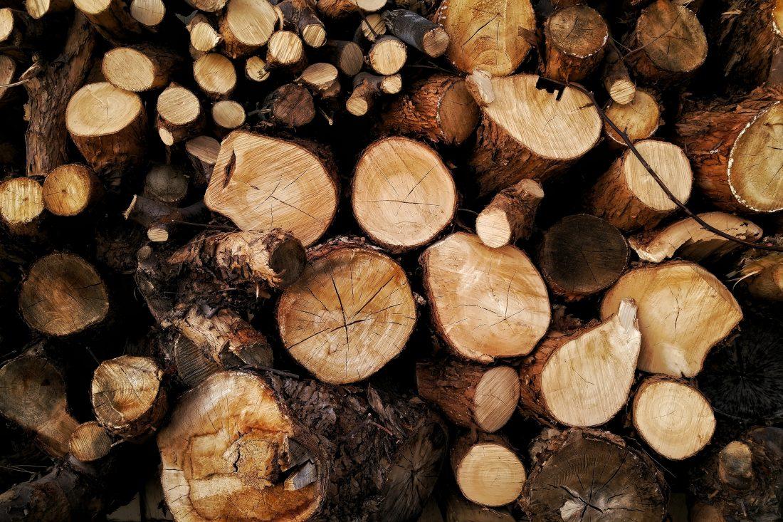 stacked tree logs free