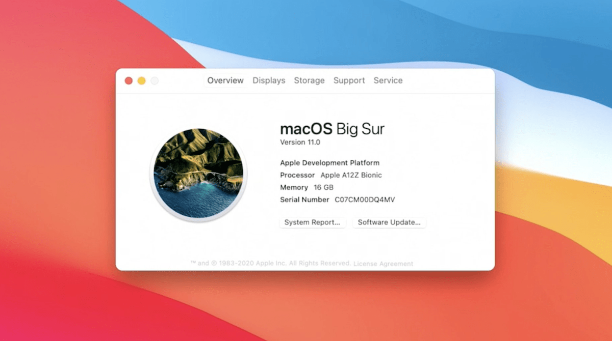 How to download macOS Big Sur 11 Developer Beta DMG and ISO Image for free