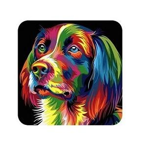 Splash n Recolor 3 for Mac Download Free