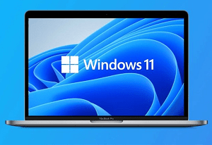 What are the best Security and Privacy Features on Windows 11