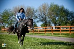 rosebud-horse-ranch-indiana07