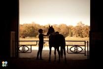 rosebud-horse-ranch-indiana11