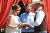 hidden-hollow-farm-wedding-photography-37