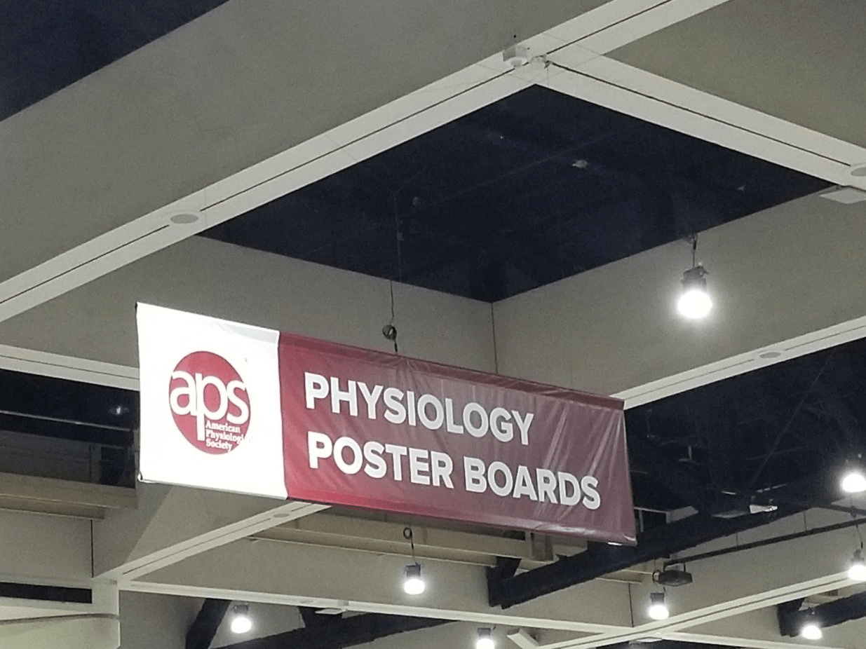 Society Of Integrative And Comparative Biology