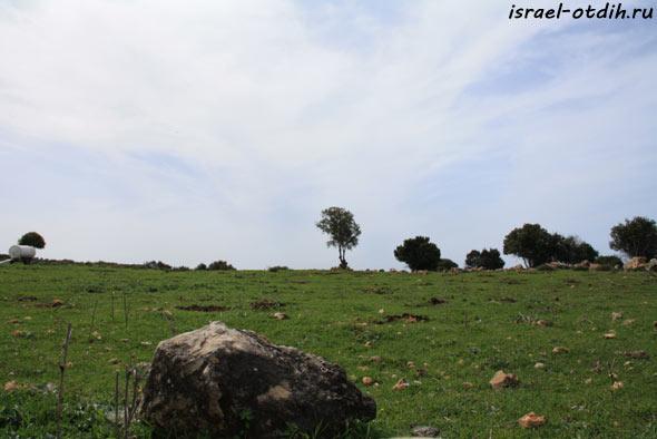 Швейцария в Израиле