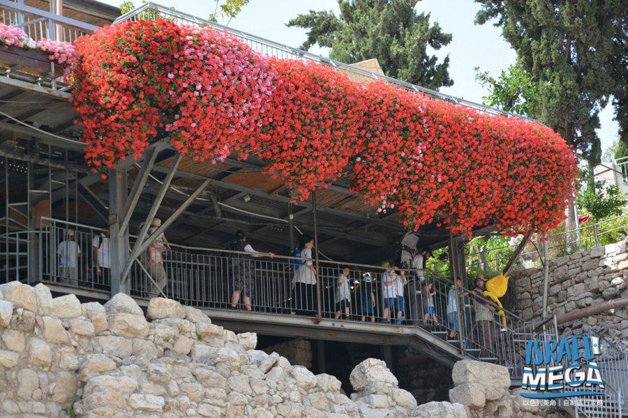 適合前往以色列旅遊的季節