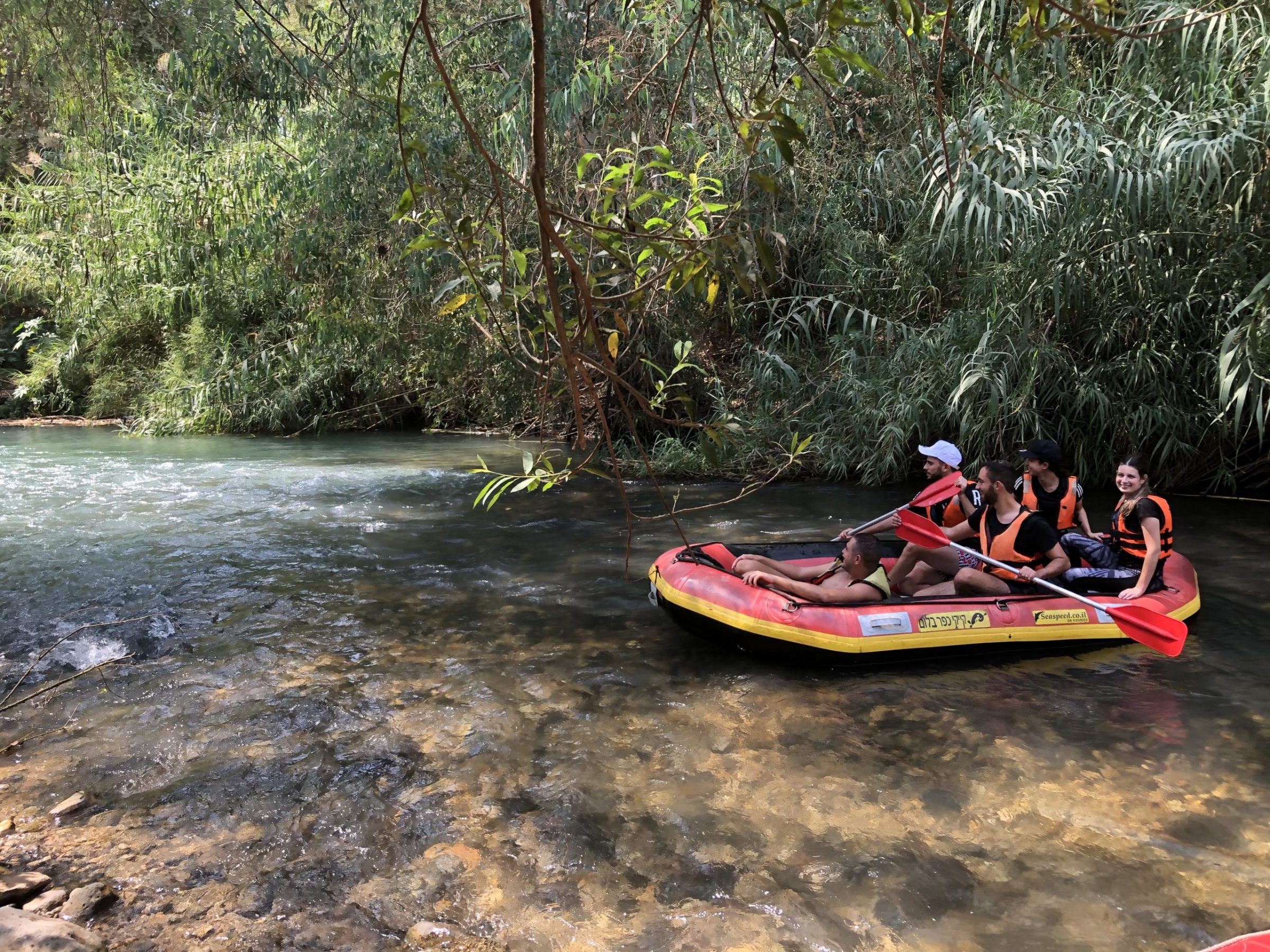 Vacation in Upper Galilee