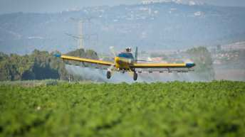 Israel spraying herbicides inside Gaza violates int'l law, rights groups say