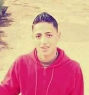 Alaa_Hashash
