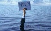 Cómo podrías ayudar