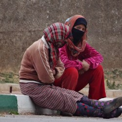 Development Dialogue 2018   Morocco's 'ninjas': The hidden figures of agricultural growth by Lisa Bossenbroek and Margreet Zwarteveen