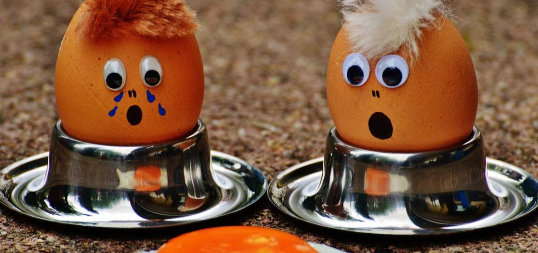 Eier liefern Proteine