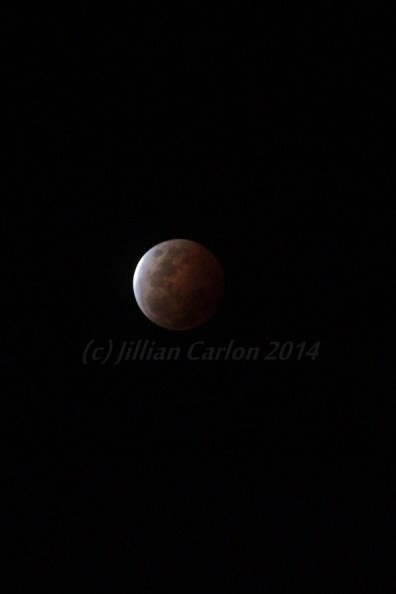 The October total Luna eclipse provided me with a photographic challenge.