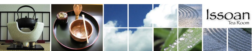 cropped-header.jpg