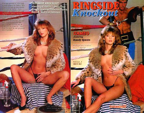 Ringside Knockout (1990)