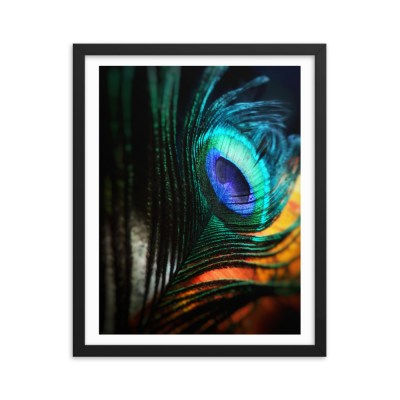 Framed poster- Blue Feather