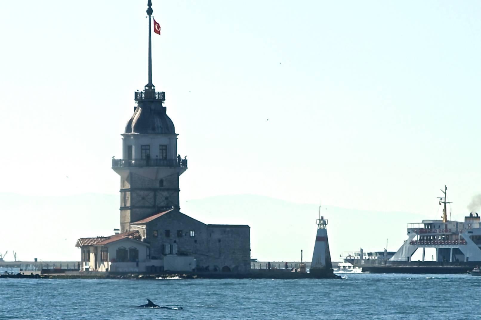 Mädchenturm mit Delfinen