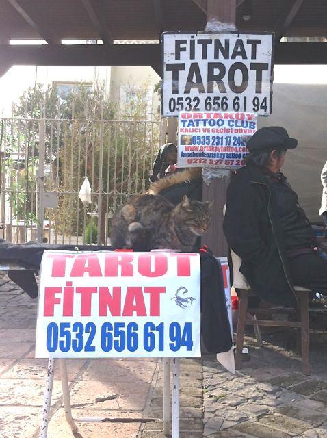 Tarotkarten Ortaköy Markt