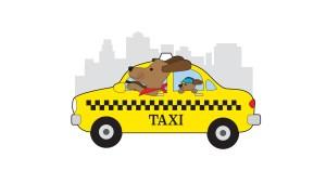 pet-taksi