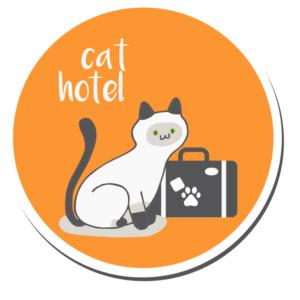 kedi-oteli