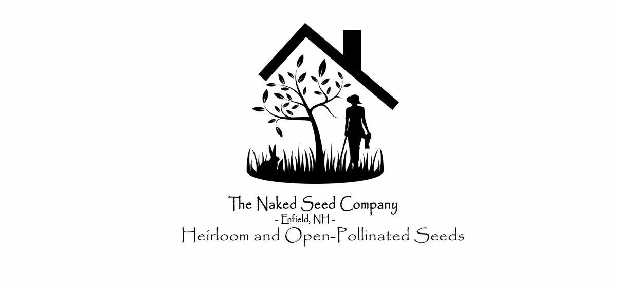 Greek Oregano   The Naked Seed Company