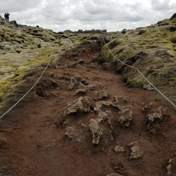 Eldhraun Lava Fields path between the ropes