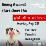 Emmy Nominees Asked to Show Their Shelter Pet Love Tonight