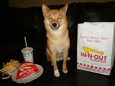 dog friendly california restaurants