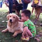 Muslims Touch Dogs for First Time at Malaysian Event