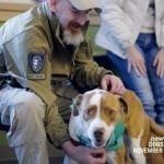 Hero War Dogs to Be Honored for First Time in NYC Veterans Day Parade