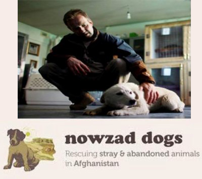 nowzad dogs pen farthing