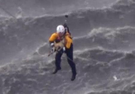 firefighter rescues dog in L.A. River