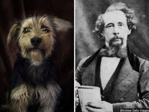 poetic dogs charles dickens