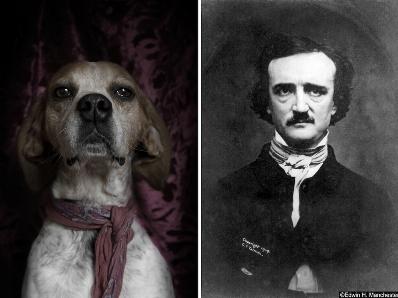 poetic dogs edgar allen poe