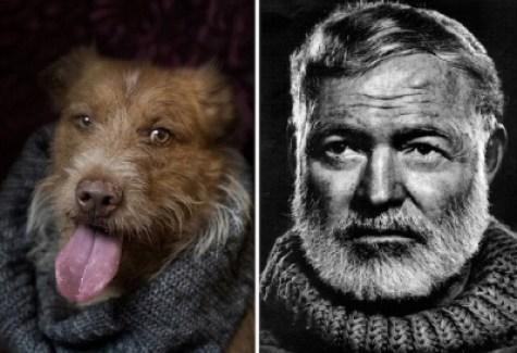 poetic dogs ernest hemingway