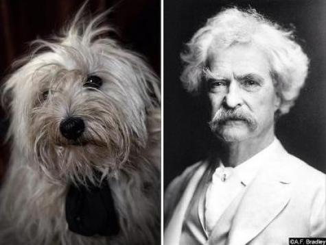poetic dogs mark twain
