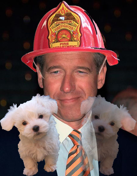 Brian Williams firefighter with puppies