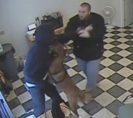 dog stops gas station robbery