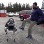 Meet 'Spot,' a 160-Pound Dog Robot